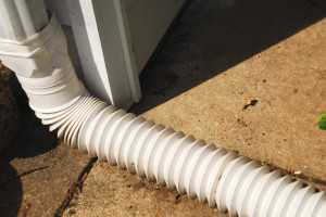 downspout_ extension